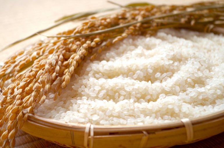 ○○の棚田で収穫されたお米