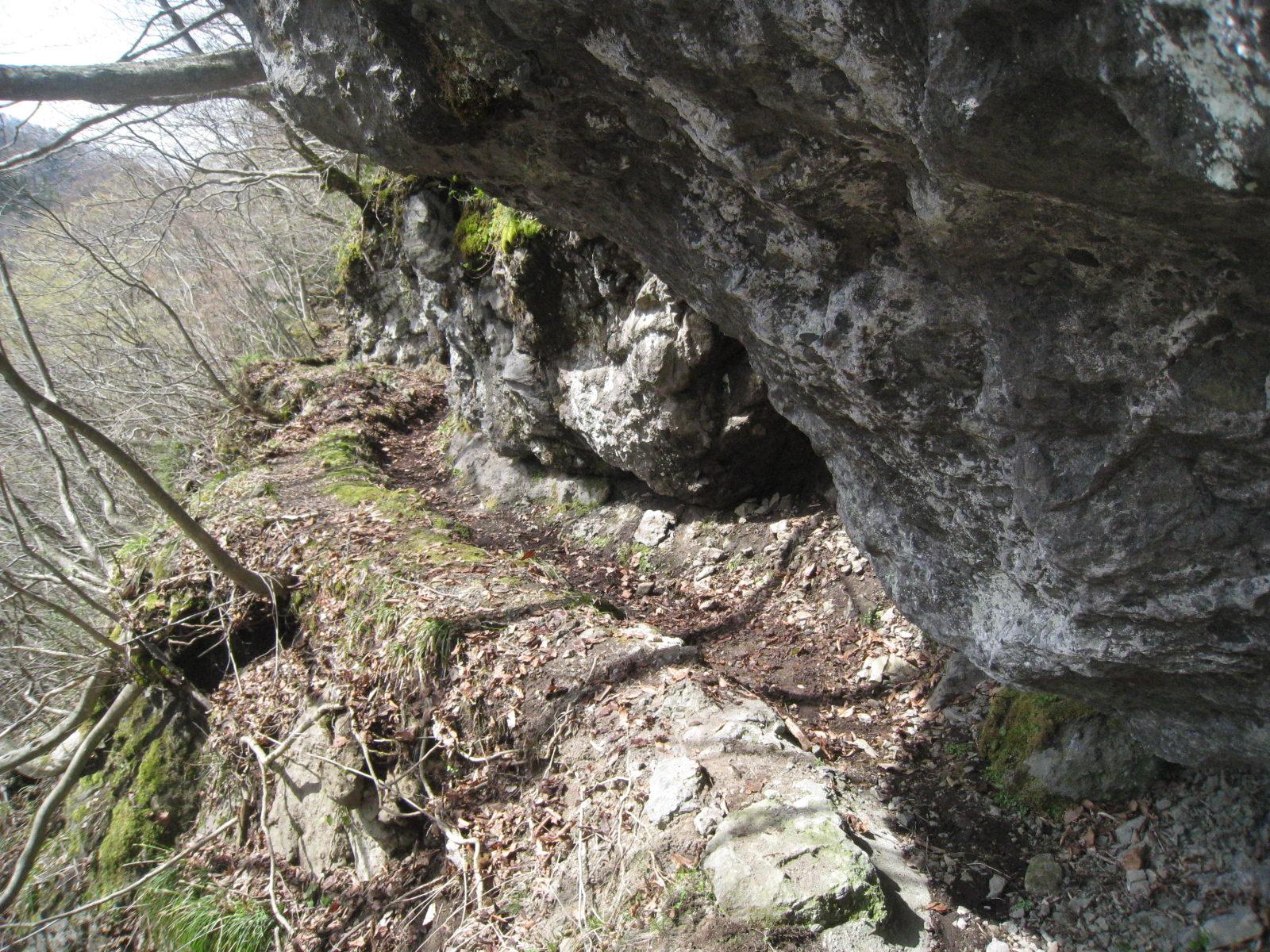 写真岩水路